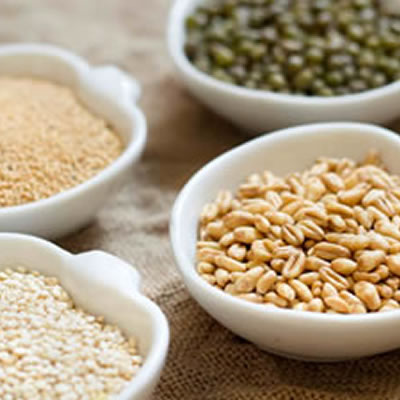 assorted types of whole grain fiber