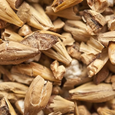 Non-diastatic malt is a product of sprouted grains which is used to add color and aroma to baked goods.