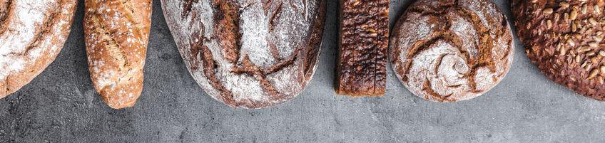 sourdough bread artisan starter