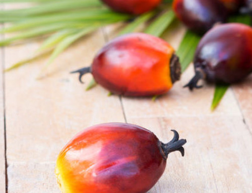 The Versatility of Palm Oil