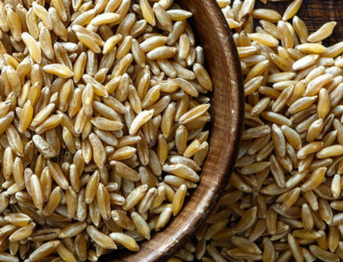 Baking with Ancient Grains: Khorasan Wheat