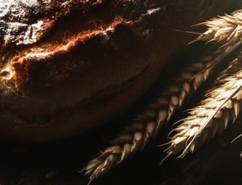 The Science Behind Cultured Wheat