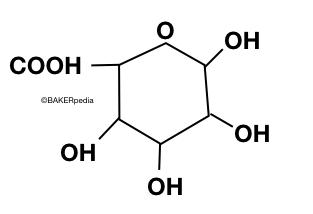 A Pectin Molecule.