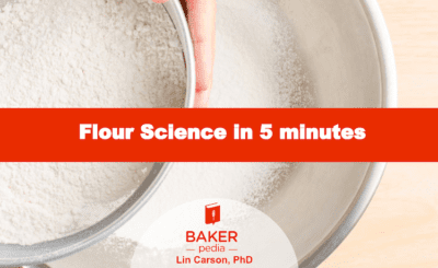 Flour Science in 5 minutes, a free download by BAKERpedia.