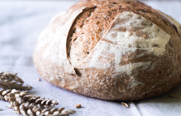 Science of Sourdough Bootcamp.