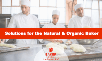 Solutions for the natural and organic baker, an ebook by BAKERpedia.