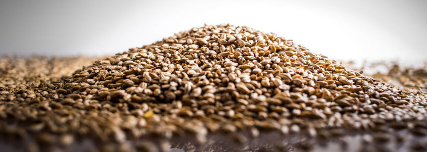 Why You Should Bake with Ancient Grains