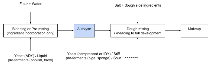Diagram showing the autolyse process.