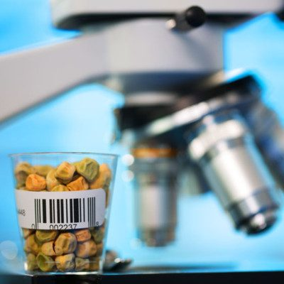 Non-GMO or GMO free ingredients do not contain altered genetic material transferred from one organism into another or between non-related species.