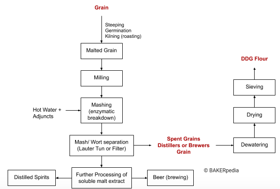 Block diagram of the production process of DDG flour.