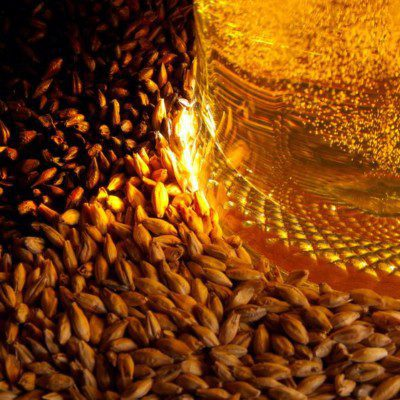 Distillers grain bread is a yeast-leavened bakery product made from a combination of bread flour and distillers or brewers dried grain flour.