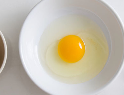 What's the Best Egg Replacer?