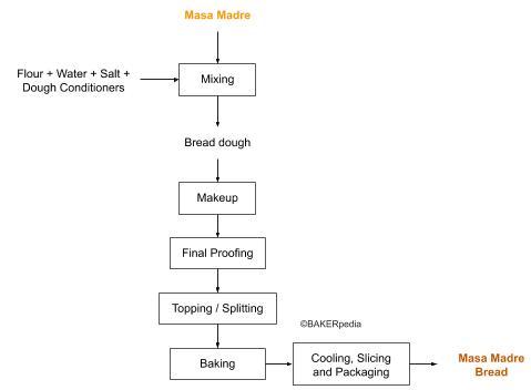 Masa Madre in bread production.