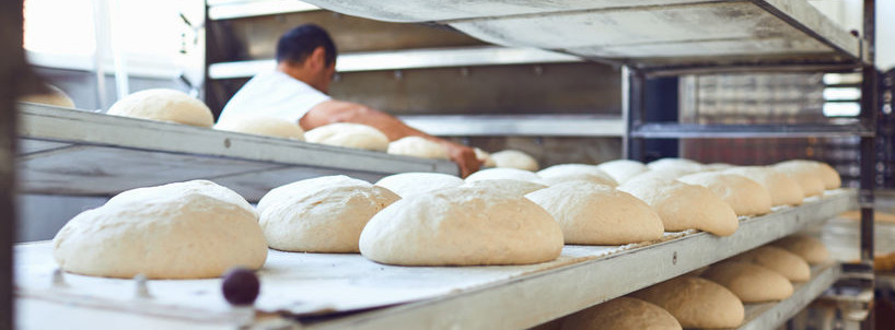 Quality and customized ingredients for the baking industry from Lallemand Baking.