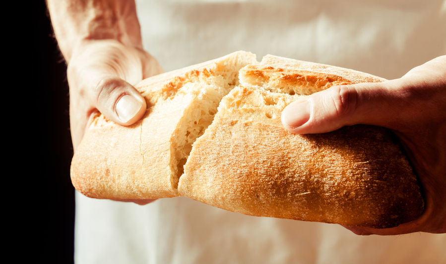 The Great 90 Day Bread Eating Challenge Blog Bakerpedia