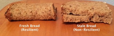 Figure 1: Fresh vs Stale Bread to show the importance of resilience.