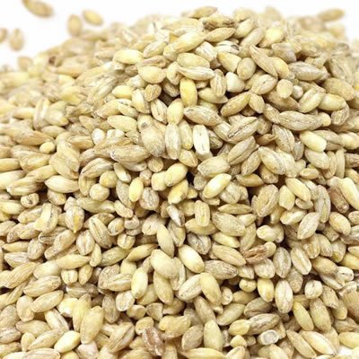 Beta glucans are sugars derived from a variety of cereal grains and plants.